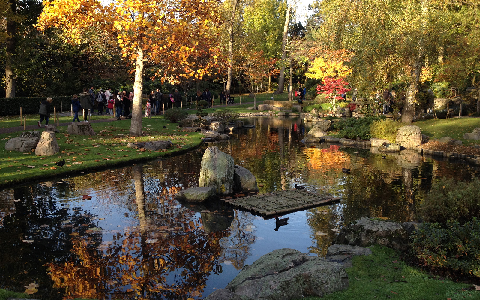 Kyoto gardens photos - London in photos - London photos, London Zoo ...